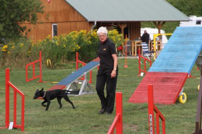 Hundesport Agility, Obedience, Rally Obedience und Gehorsam
